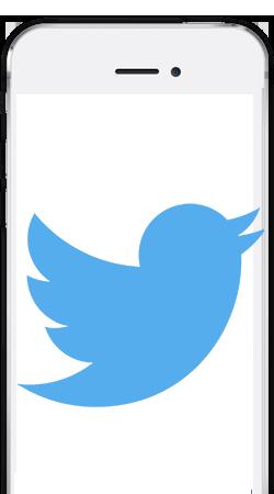 Il lento declino di Twitter