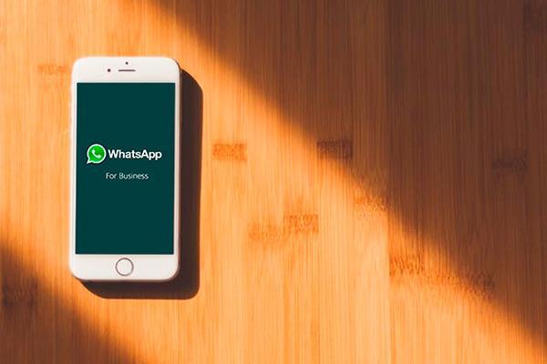 Scopri WhatsApp Business: la nuova app dedicata alle aziende